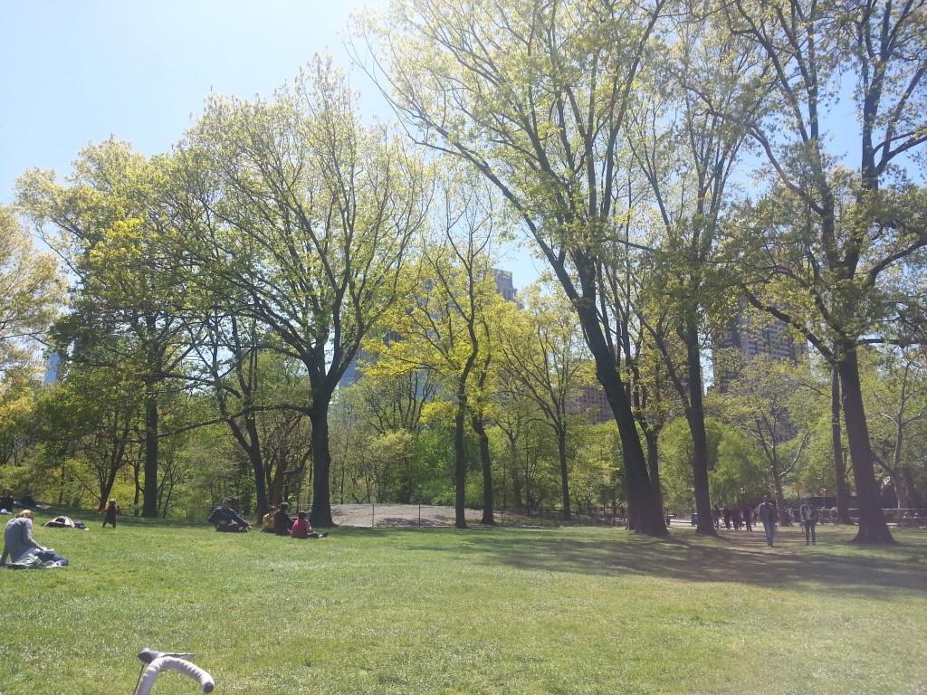 Tag 3 - Central Park 1
