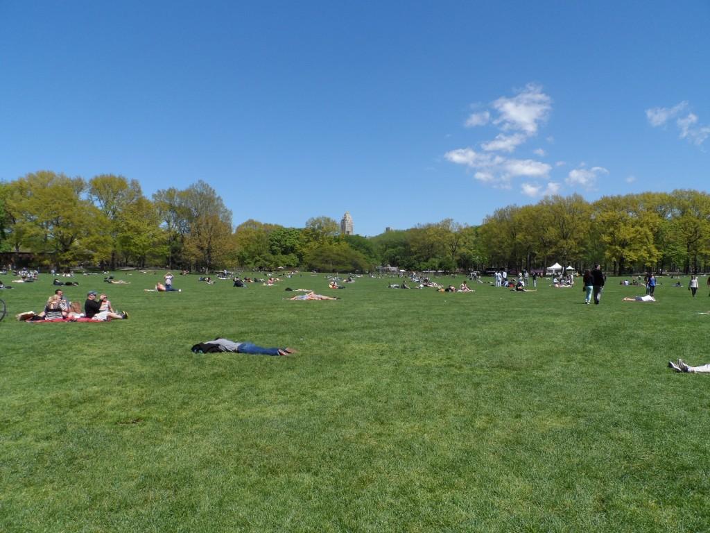 Tag 3 - Central Park 4
