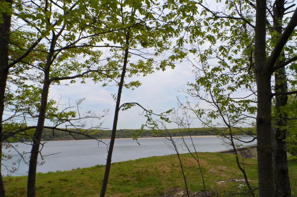 Tag 15 - Harriman State Park 3